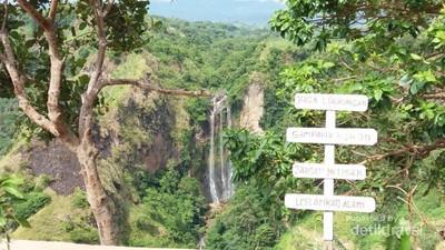 Seperti Permadani Hijau, Bukit Bossolo yang Cantik dari Sulawesi Selatan