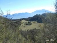 Pemandangan Savana dari Puncak Gunung Butak