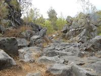 jalur berbatu mendominasi pendakian gunung lawu melalui jalur cemoro sewu