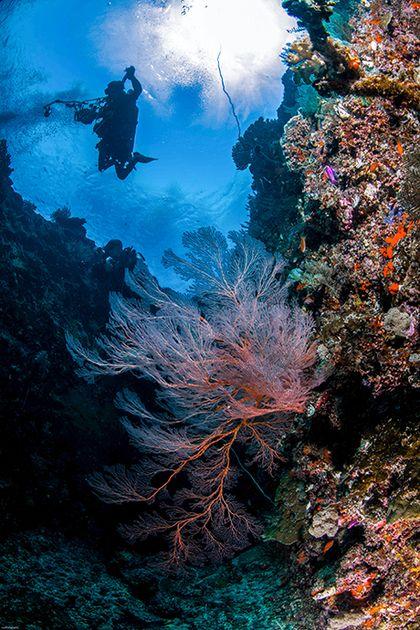 Cave Pulau Rani Biak Papua
