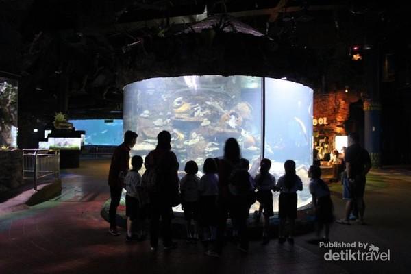 Pengunjung yang ramai di Seaworld
