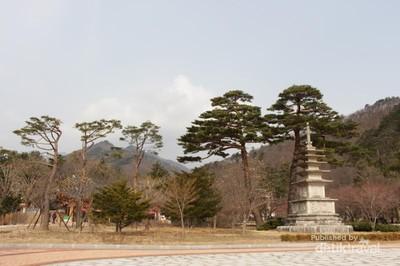 Bersorak Ria di Gunung Seorak, Korea Selatan