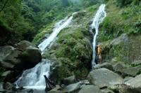 Air terjun Cibadak, Suaka Elang Loji, Taman Nasional Gunung Halimun Salak, Bogor