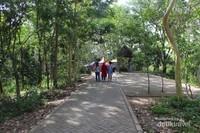 Jalan di dalam hutan kota ini sudah nyaman. Paving blok terpasang rapih untuk pajalan kaki