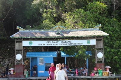 Bercanda Bareng Ubur-ubur Tak Menyengat di Danau Kakaban