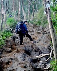 Mendaki jalur Gunung Merbabu yang lumayan sulit