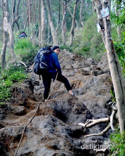 Foto: Menggapai Puncak Merbabu dan Prau