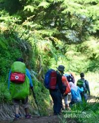 Menyusuri trek Gunung Prau