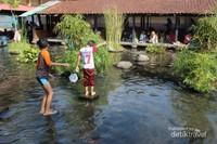 Keseruan anak-anak bermain di kolam pakecehan sambil menangkap ikan