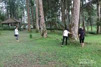 Dekat tempat parkir terdapat pepohonan yang besar dan rerumputan yang hijau, pas untuk istirahat setelah lelah berenang