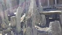 Batu Nabe merupakan tempat yang digunakan untuk berkomunikasi dengan nenek moyang
