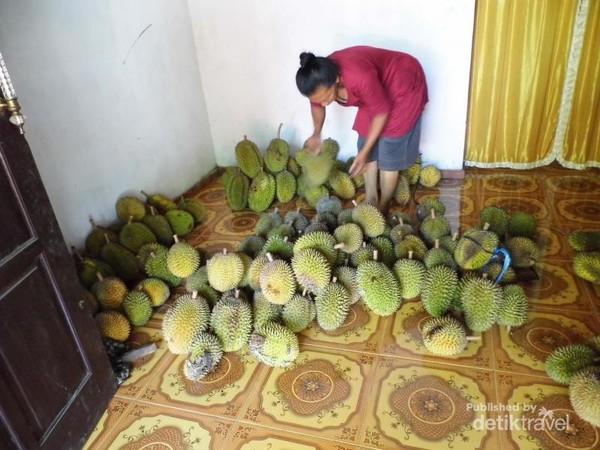 Banyak durian yang akan dijual
