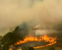 Kebakaran Hebat di Australia