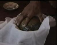Benda Mirip Telur Ditemukan di Dalam Perut Kuda