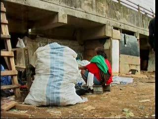 Ratusan Warga Tinggal di Kolong Jembatan