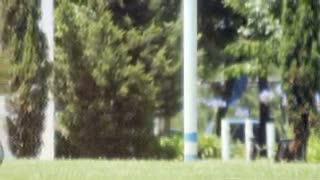 Pulang ke Argentina, Messi Mulai Berlatih Lagi