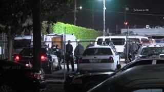 Polisi Amerika Tangkap Komplotan Maling Bagasi di Bandara