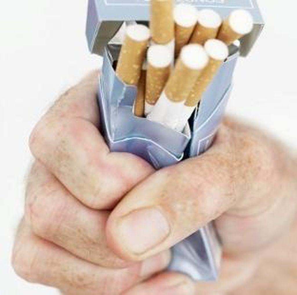 Filter Pada Rokok Tingkatkan Risiko Kanker Paru