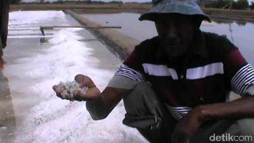 RI (Masih) Impor Garam