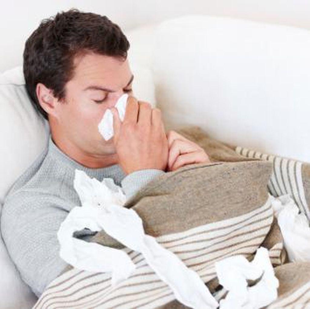 Lawan Flu, Peneliti Kembangkan Obat dari Lendir Kodok India