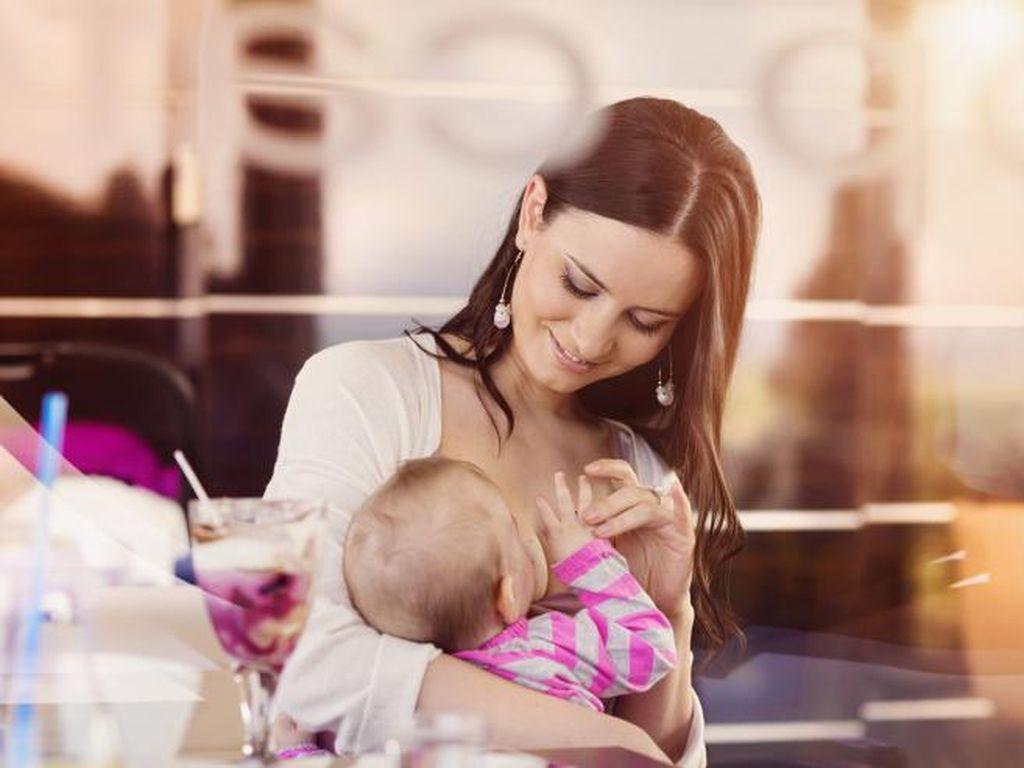 Amankah Ibu Hamil Tetap Menyusui?