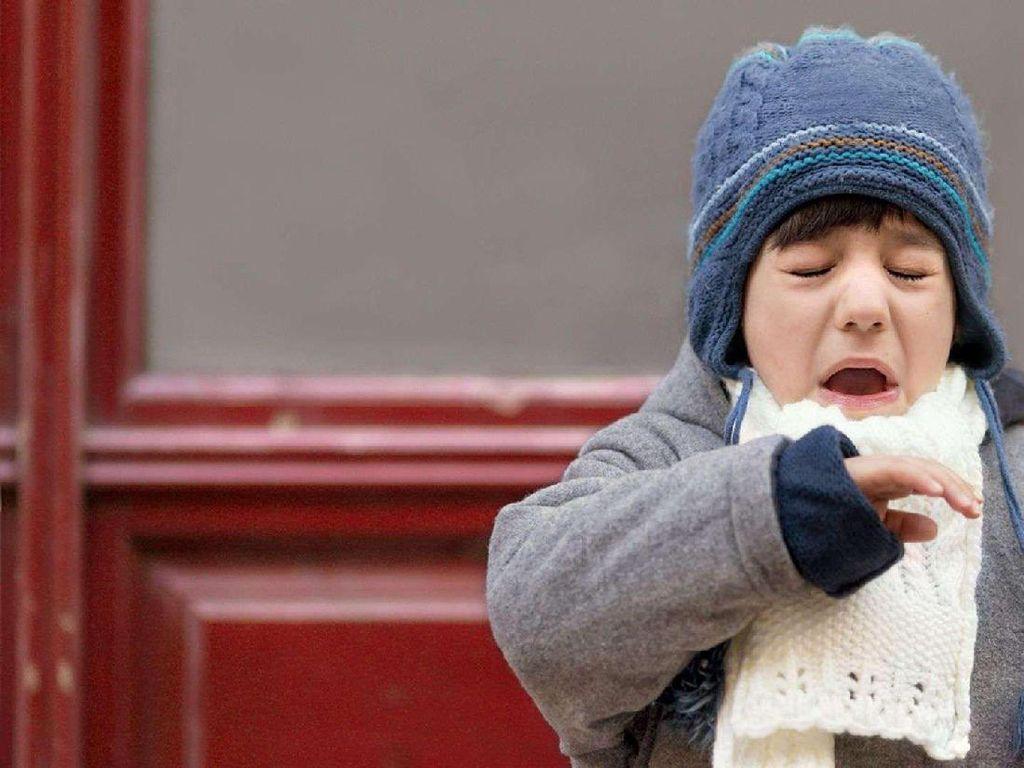 Di Indonesia, Dua Hal Ini yang Paling Sering Picu Alergi Anak