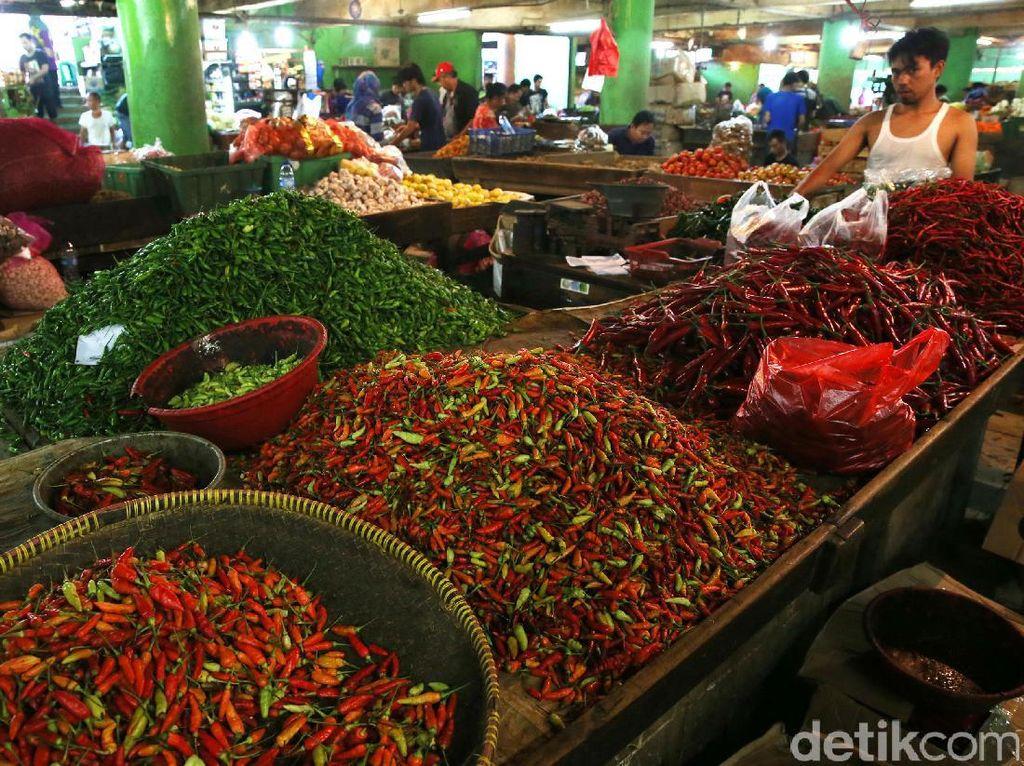 Cabai rawit merah di antara cabai hijau dan cabai keriting. Cabai rawit hijau Rp 75.000/kg dan cabai keriting Rp 35.000/kg.