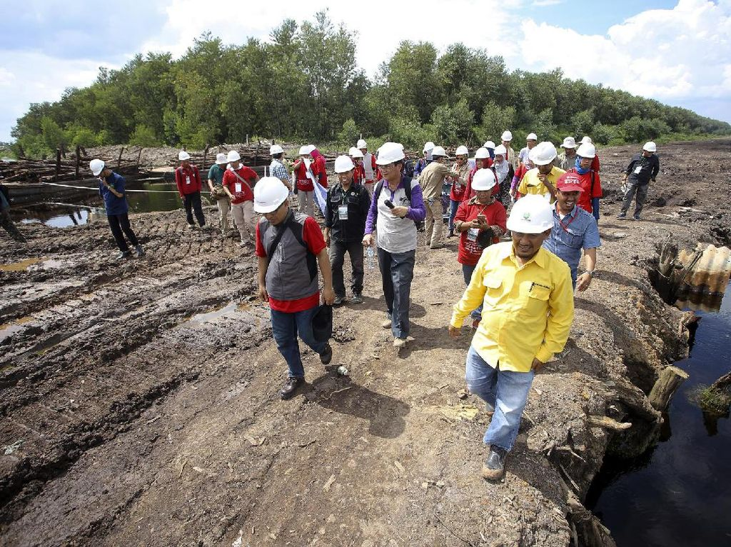Peserta Field Trip Manajemen Terpadu Lahan Gambut Kunjungi HTI