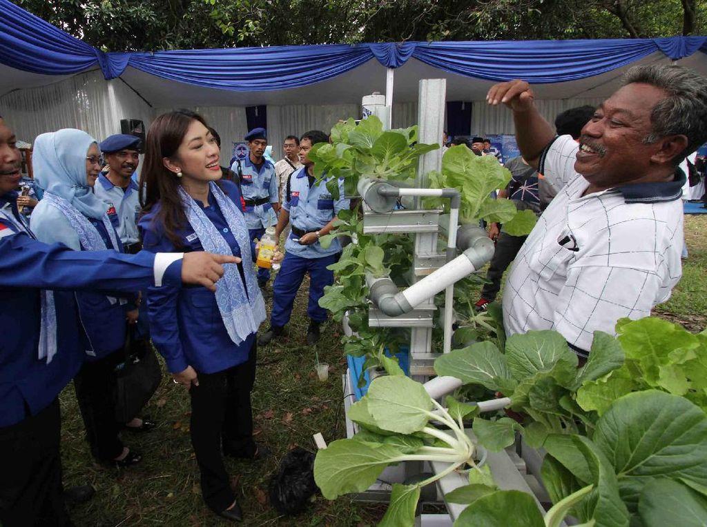 Ia juga meninjau sayuran Hidrolik dari Bazar UKM binaan partai Demokrat saat program Mitra Sehati bertema Untuk Rakyat Demokrat Peduli Serap Aspirasi dan Beri Solusi di Kraton Kasepuhan Cirebon, Jawa Barat (11/3/17). (Foto: dok. PIA Demokrat)