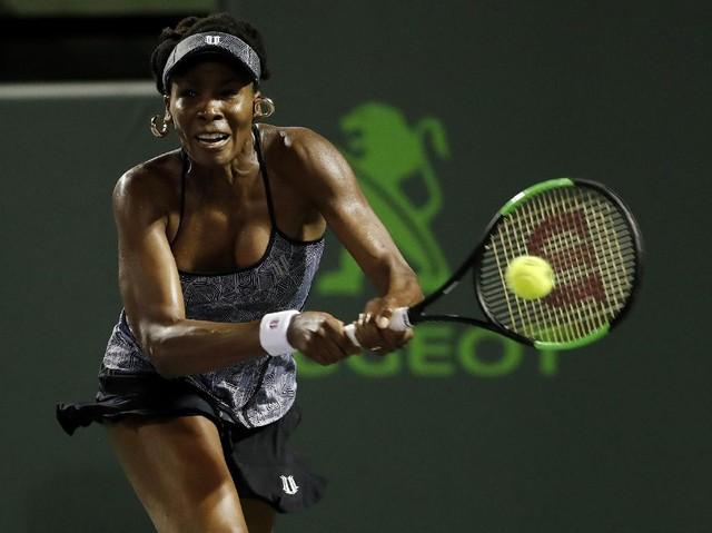 Venus Williams Pijak Semifinal Miami Terbuka