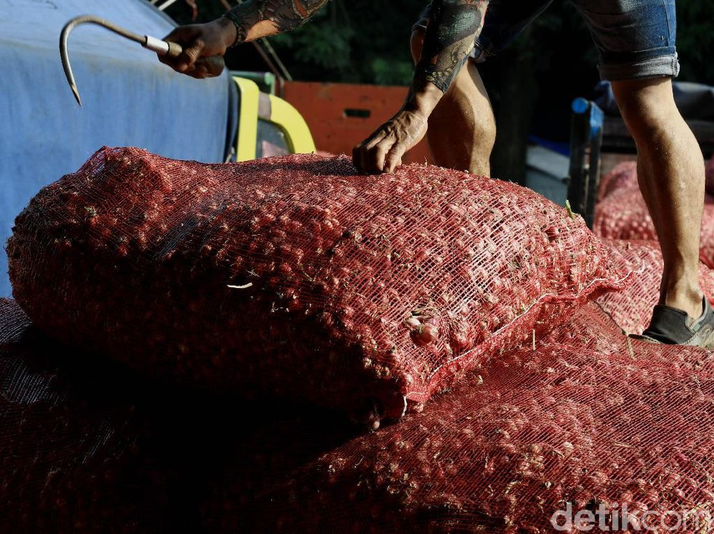 Sayur dan buah ini banyak bersal dari daerah Bogor, Jawa Tengah dan Jawa Timur.