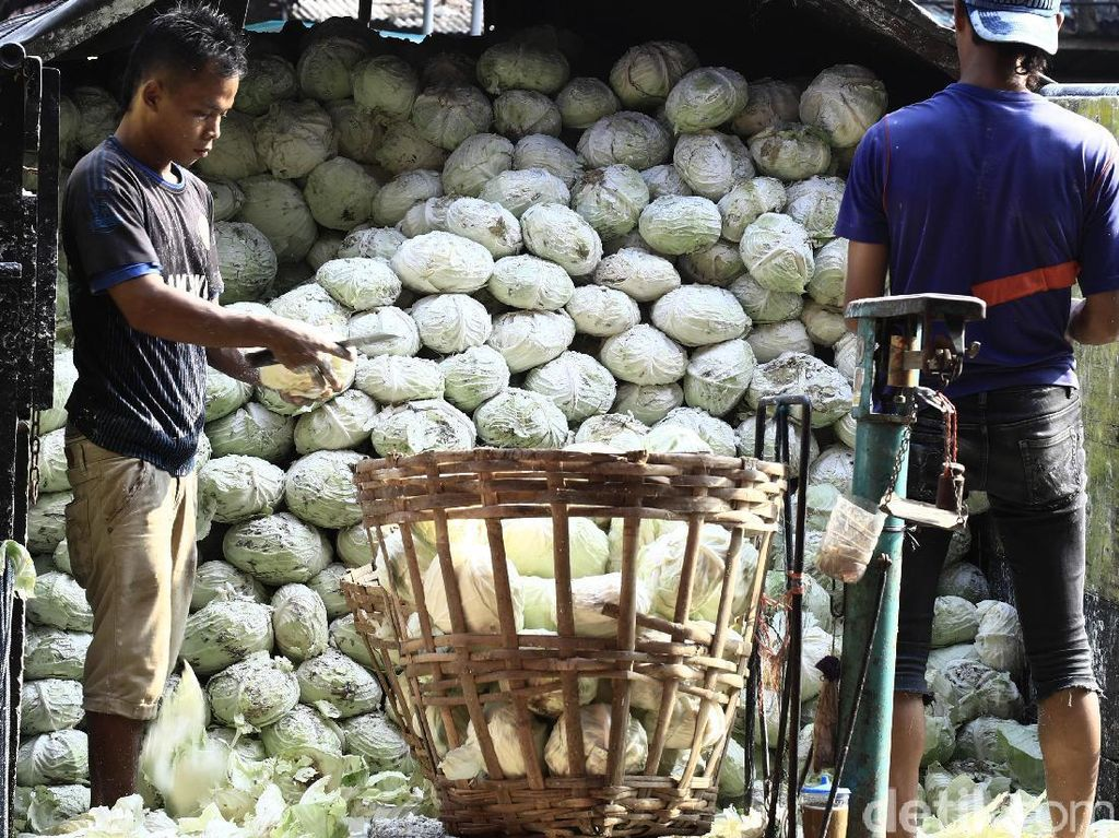 Lebih dari 3.000 ton pasokan sayur dan buah dipasok ke pasar ini.