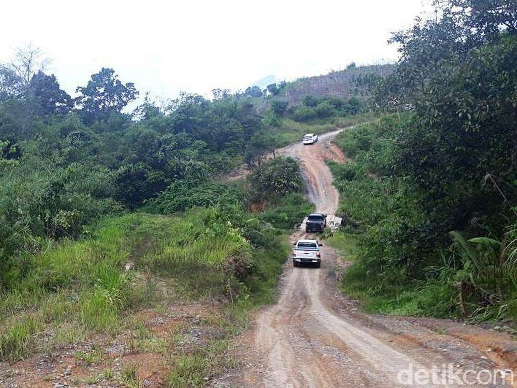 Begini Penampakan Jalan Paralel Perbatasan RI-Malaysia
