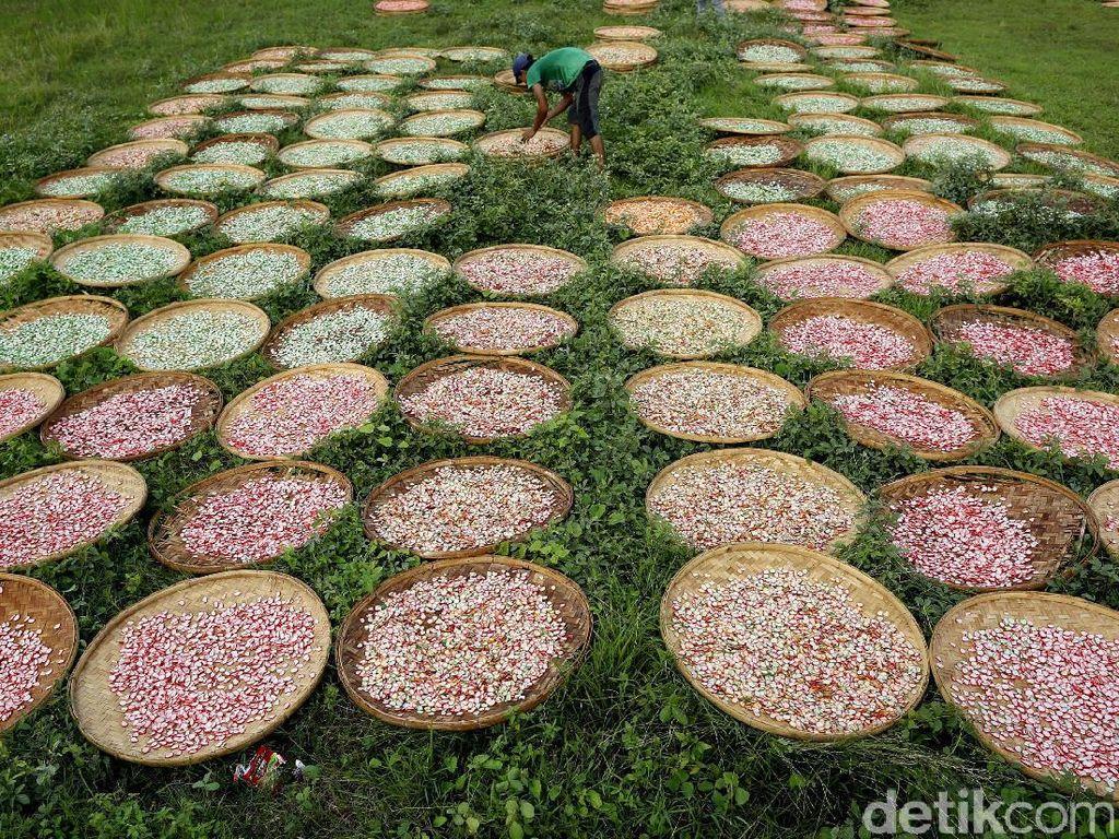 Usaha pembuatan kerupuk di Desa Kenanga kian marak di awal tahun 1990-an. Dari 30 pabrik kerupuk yang ada di desa tersebut, produksinya pun sudah makin beragam mulai dari kerupuk ikan, jengkol, hingga bawang putih.