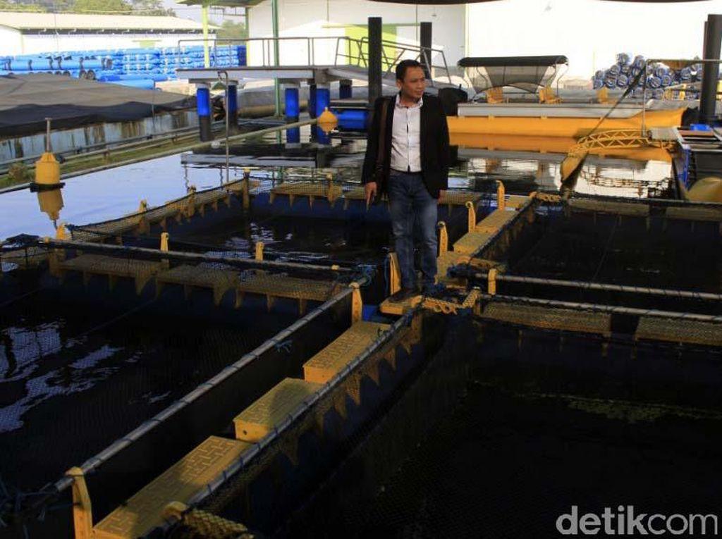 Diciptakannya KJA Offshore Submersible AquaTec, dilatarbelakangi kondisi budidaya perikanan di pesisir pantai saat ini yang menggunakan KJA sudah mulai penuh dan jenuh. Sehingga, pihaknya berpikir lokasi budidaya harus mulai pindah ke tempat yang gelombangnya lebih besar di lepas pantai (offshore).