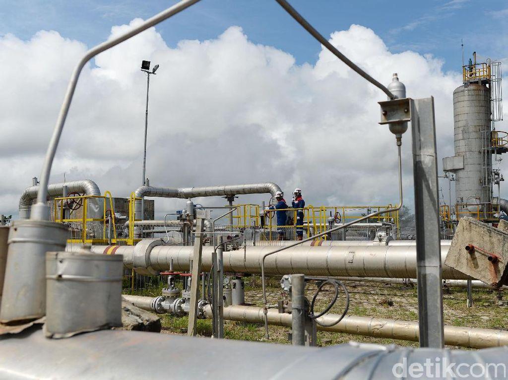 Hingga saat ini PLTP Ulubelu yang dikelola oleh PT Pertamina Geothermal Energy mempunyai 50 sumur.