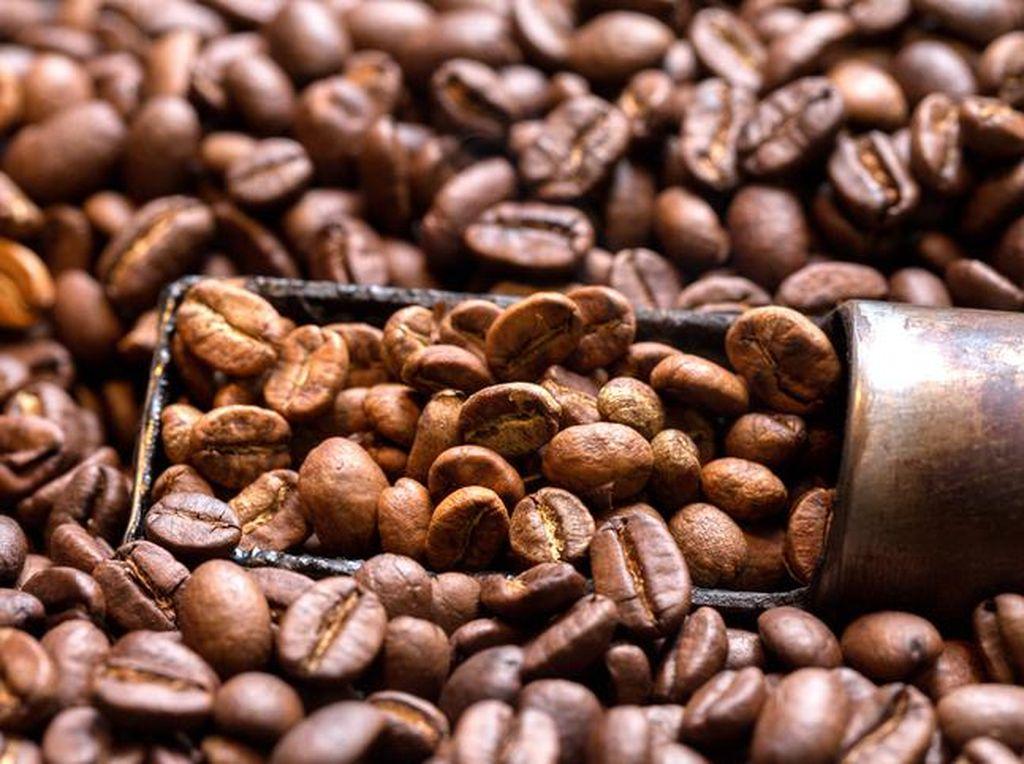 Punya Kafe atau Pencinta Kopi? Gabung Segera di Kelas Basic Coffee Roasting Ini