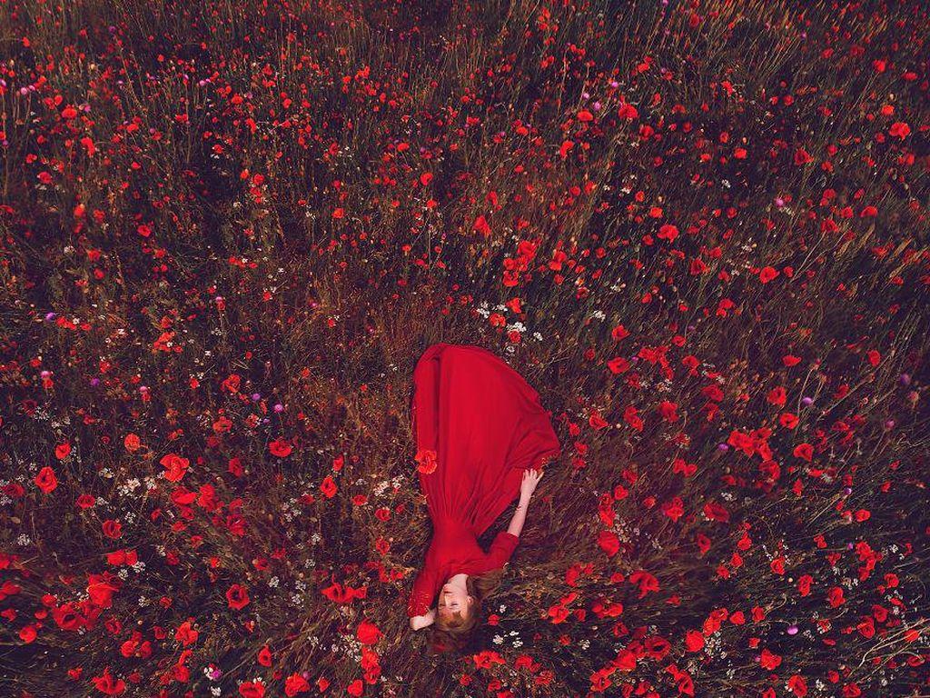 Poppies Field, Crimea. Foto: Instagram.com/hobopeeba