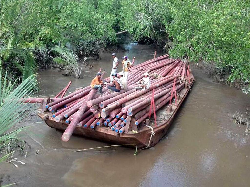 Foto: Perjuangan Terangi Pelosok Riau, Arungi Sungai Hingga Masuk Lubang