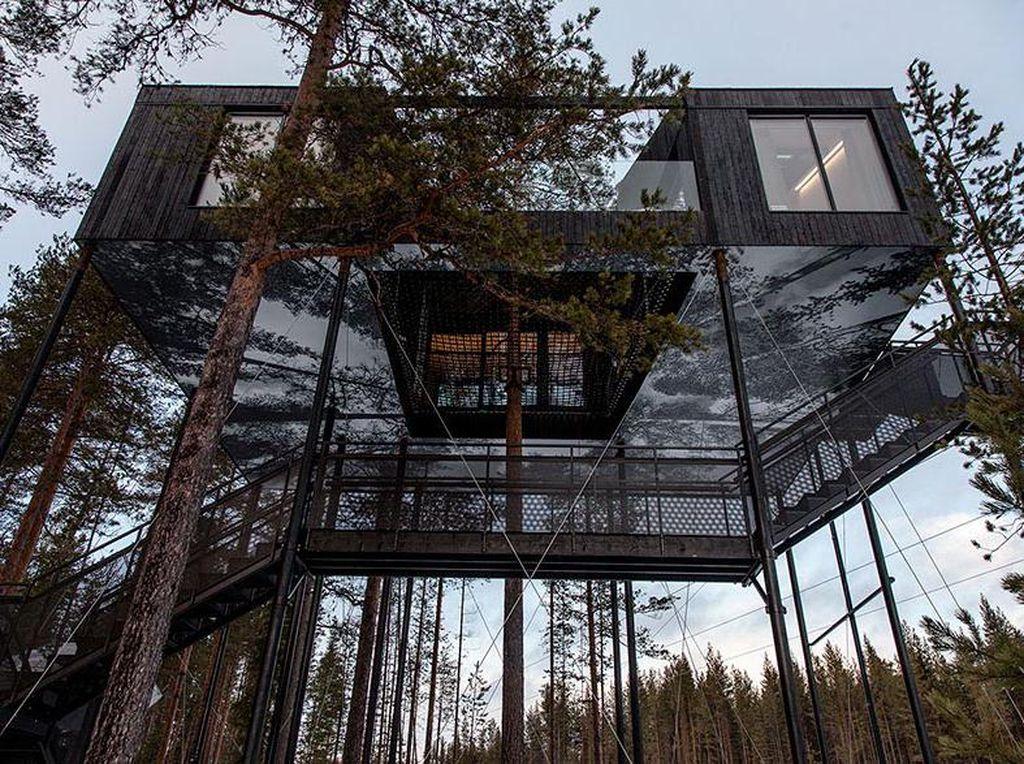 Desain rumah yang terlihat sangat modern di kawasan hutan cemara ini berdiri sekitar 30 meter dari permukaan tanah. Istimewa/Johan Jansson/Boredpanda.