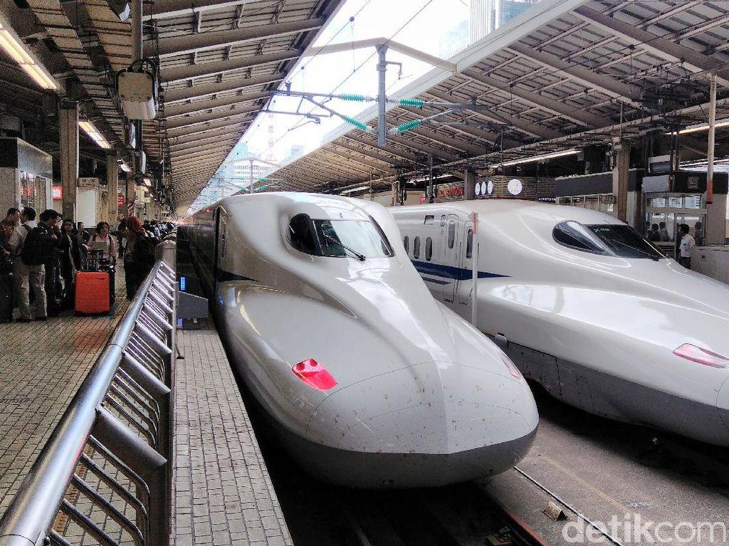 Ada dua kelas Shinkansen Nozomi, yaitu ordinary class dan green class. Bedanya hanya konfigurasi tempat duduk, ordinary class 3 kursi di sisi kiri dan 2 kursi di sisi kanan. Sedangkan green class 2 kursi di sisi kiri dan kanan. Satu shinkansen biasanya terdiri dari 16 rangkaian.