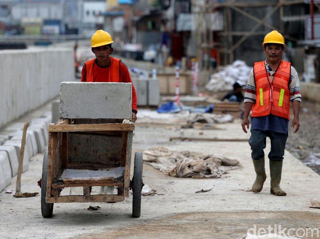 Mantan Gubernur DKI Jakarta Djarot Saiful Hidayat pernah mengatakan proyek normalisasi yang dimulai dari era Gubernur DKI masih Joko Widodo tersebut memang butuh waktu yang lama.