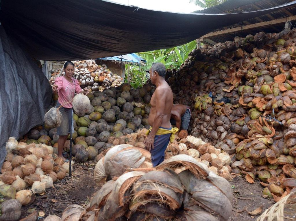 Ada juga petani yang tetap beraktivitas di kawasan zona merah di Desa Menanga, Karangasem, Bali, Jumat (20/10). Wira Suryantala/Antara Foto.