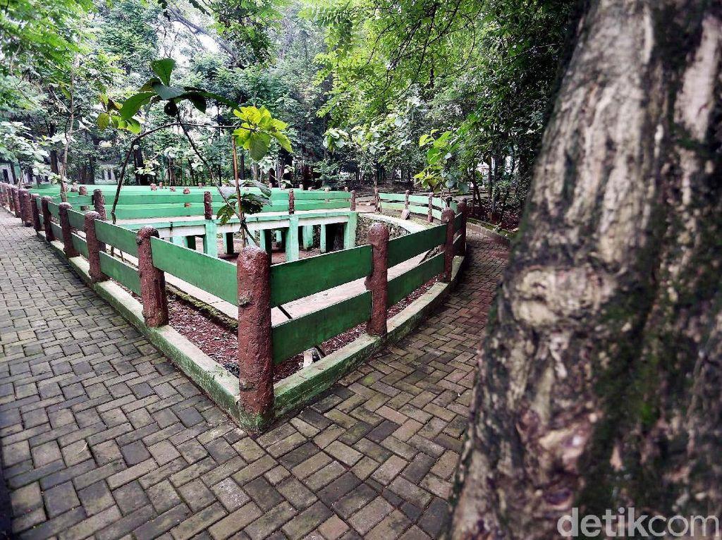 Nasib Hutan Kota Kampung Dukuh yang Tidak Terawat